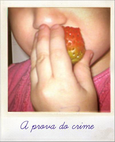 A prova do crime